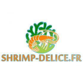 Fruits d'Aulnes – nourriture pour crevettes
