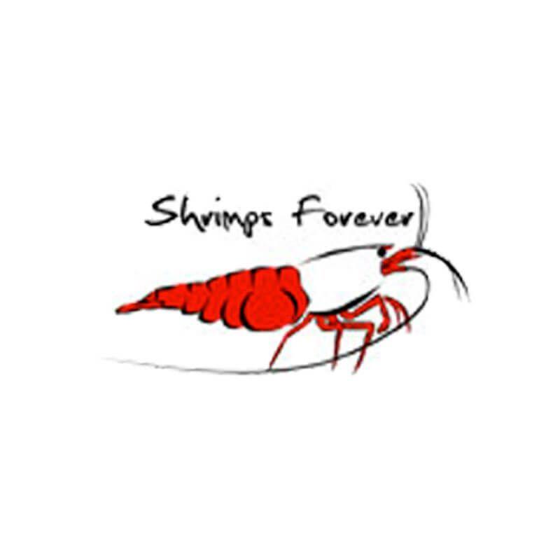 Shrimps Forever - Nourriture pour crevettes